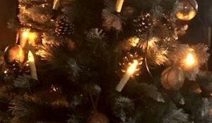 Unsere Gerichte für Sie zu Weihnachten zum Abholen.